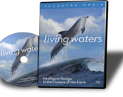 Living-Waters-